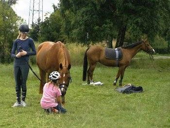 Kinder lieben Reiterferien